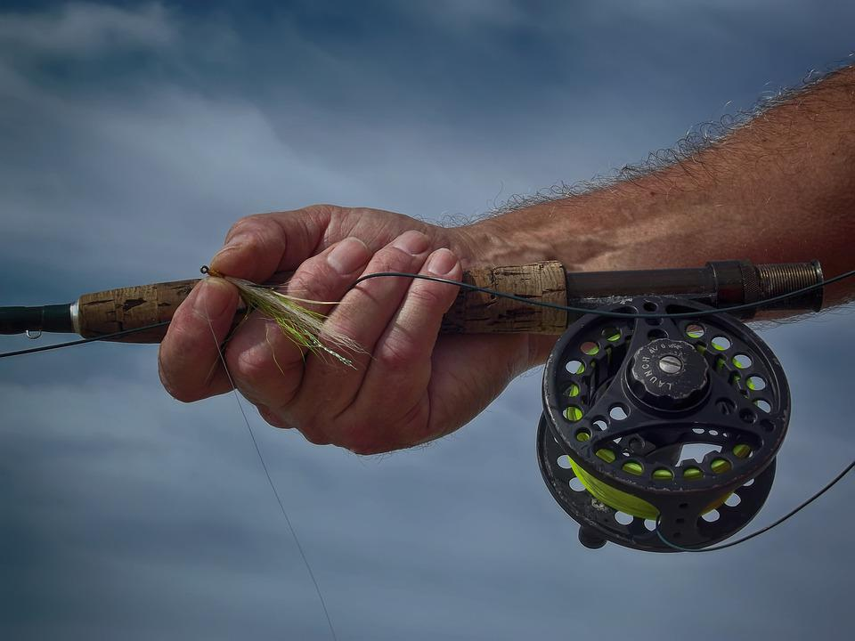 Fly-fishing, Social-distancing, Rod, Hand, Fly, Fish