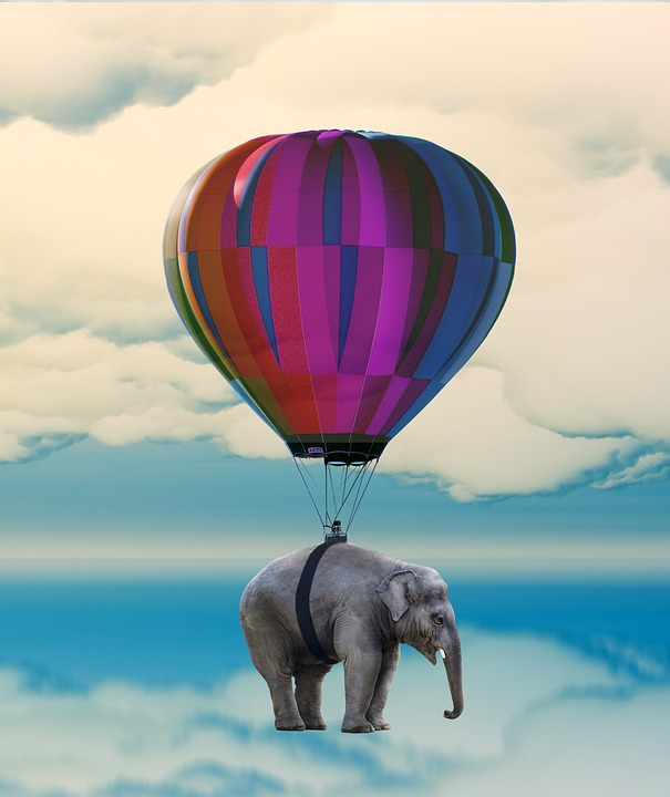 Elephant, Balloon, Flying, Weightless
