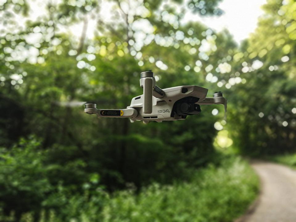 Drone, Mavic, Dji, Forest, Flying, Nature, Green