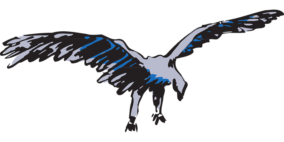 Blue, Bird, Flying, Silver, Wings, Feathers, Fly