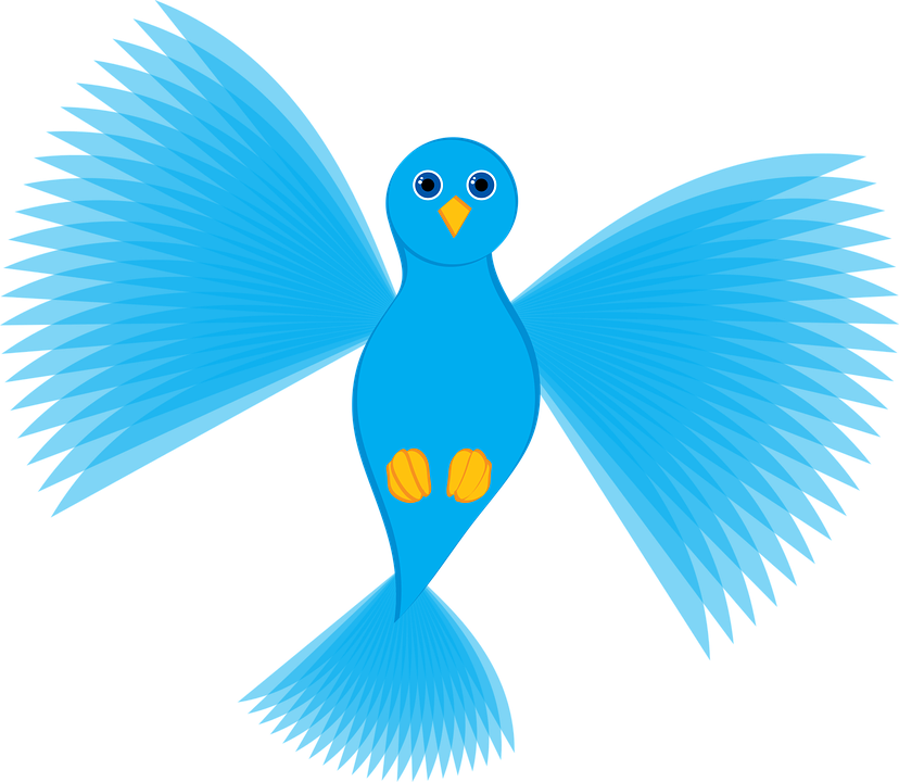 Dove, Fly, Flying