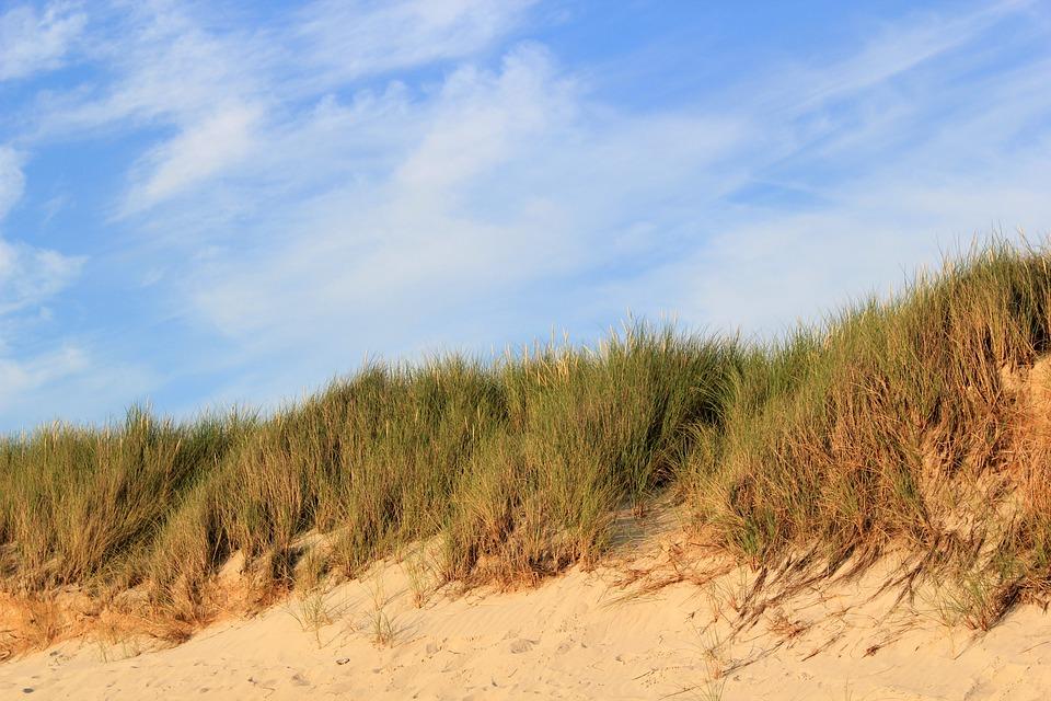 Dunes, Sand, Sky, North Sea, Föhr