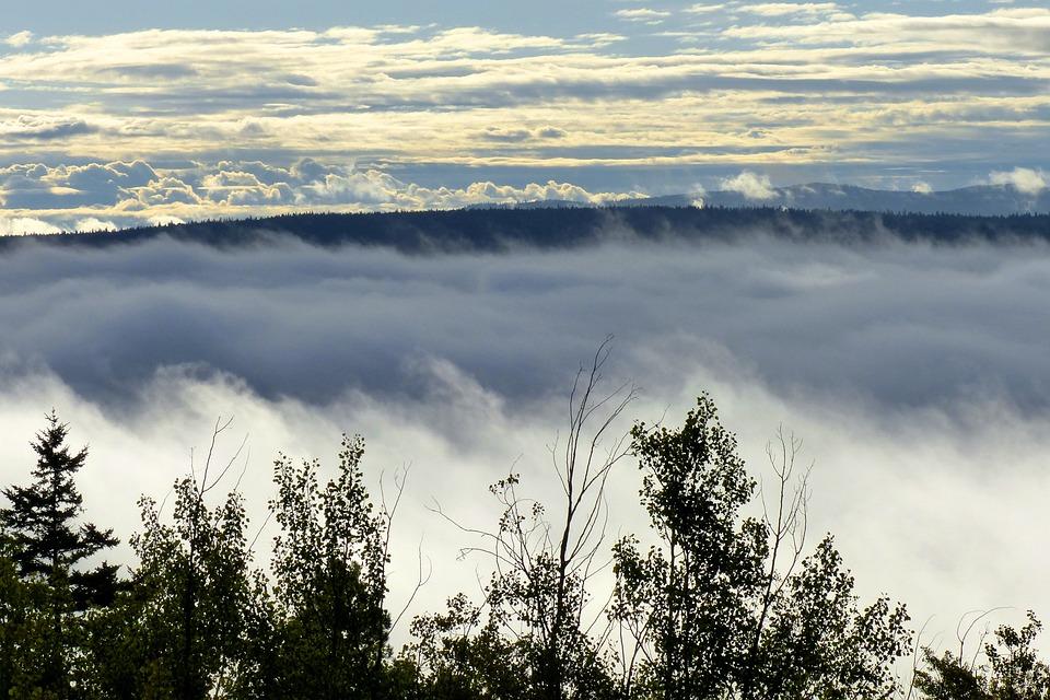 Landscape, Fog Bank, Clouds, Sky, Nature, Fog Covered