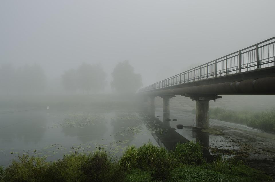 Fog, Bridge, Autumn, Beach, Trees, River, Dampness