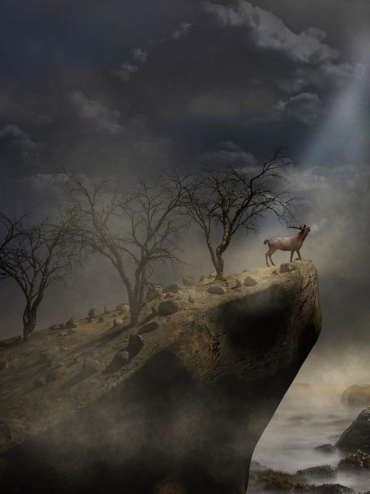 Panorama, Landscape, Fog, Dawn, Trees, Hirsch, Cold