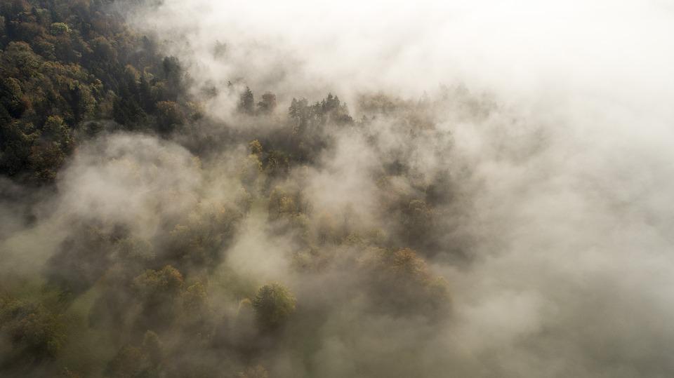 Fog, Clouds, Dusk, Cloudiness, Flying, Flight, Autumn