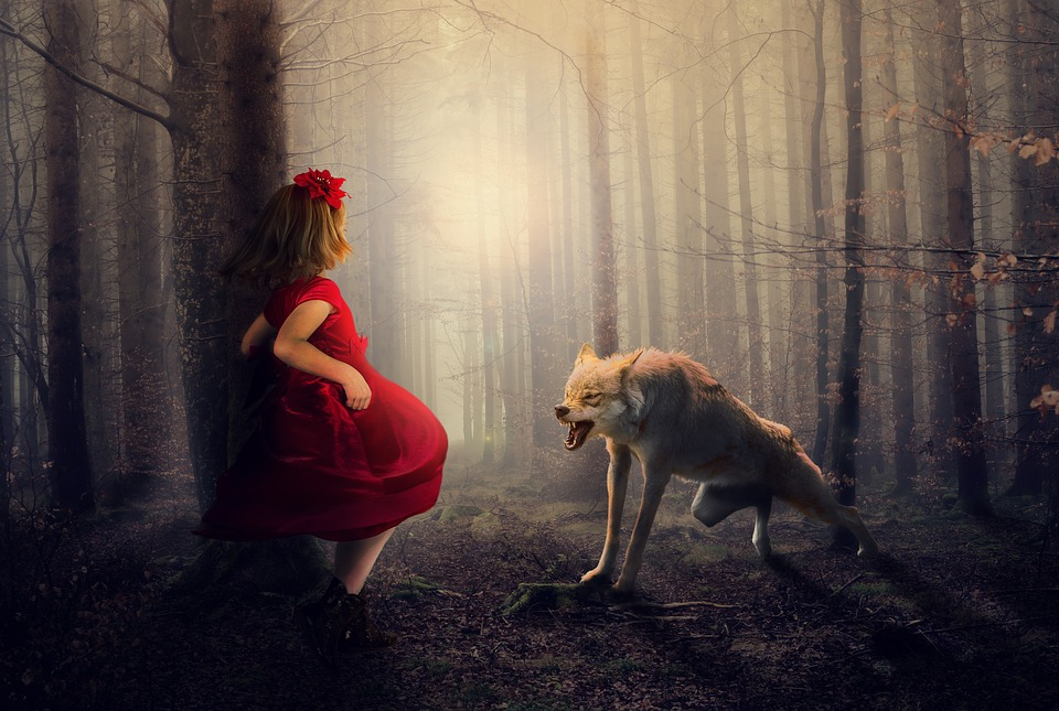 Red, Wolf, Forest, Woods, Fog, Girl, Dress, Anger