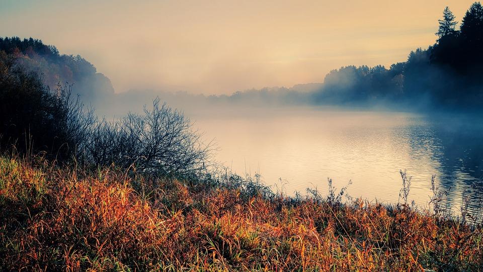 Fog, Lake, Bank, Mist, Water, Grass, Meadow, Nature