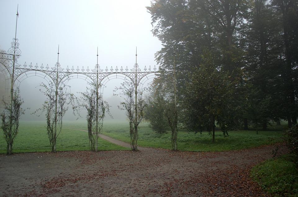 Fog, Park, Kroměříž, Nature