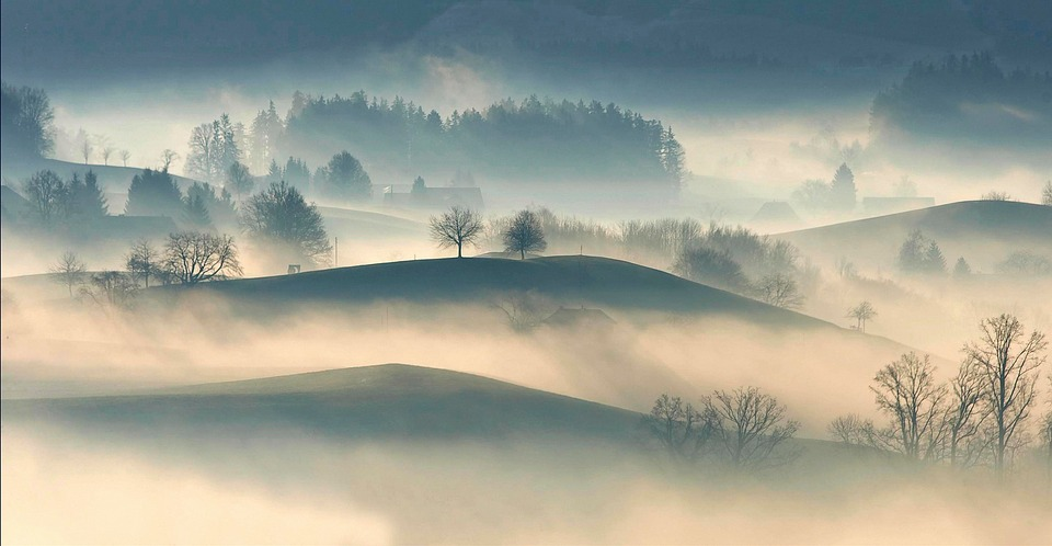 Hilly, Countryside, Highland, Trees, Plant, Nature, Fog