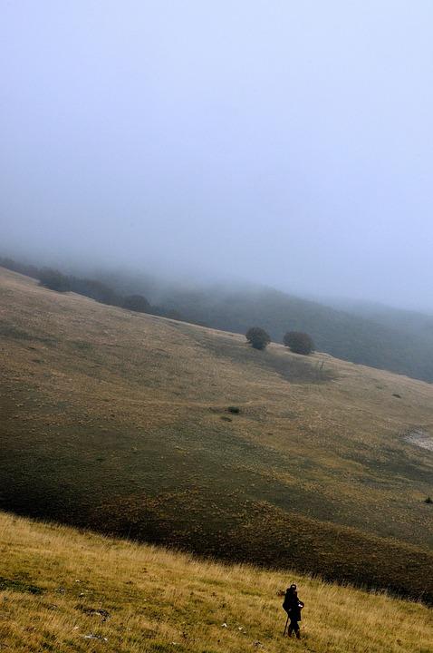 Fog, Campaign, Solitude, Pastor, Italy, Amazement