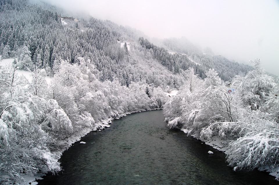 Winter, Snow, Wintry, Nature, Winter Bushes, River, Fog