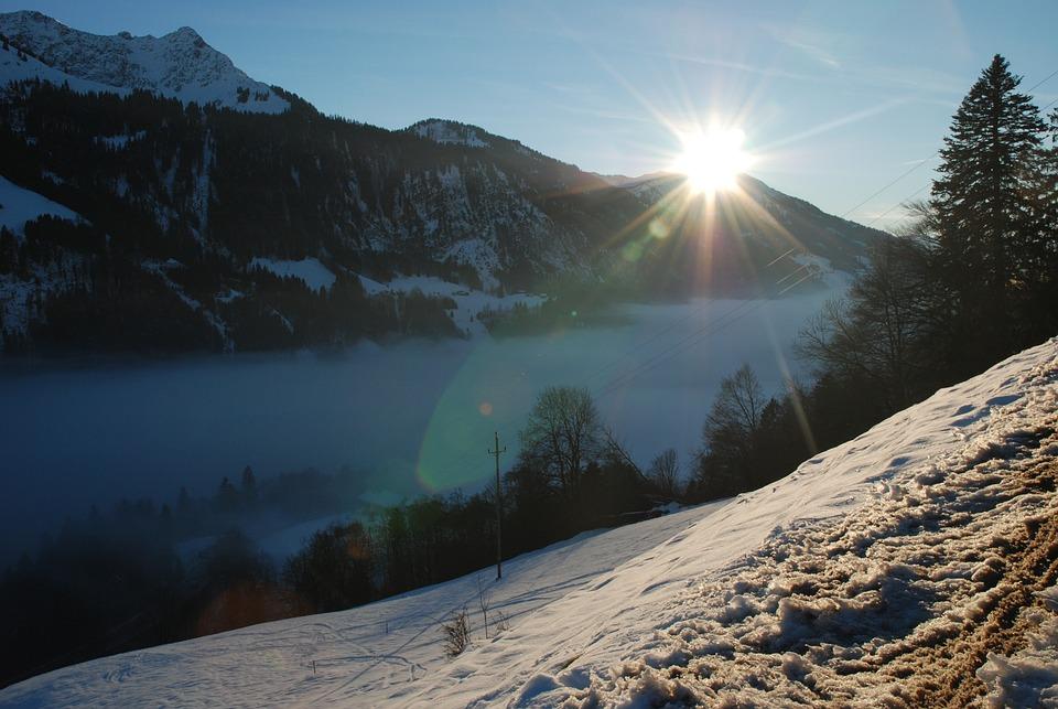Fog, Sun, Snow, Forest, Alpine, Winter, Nature