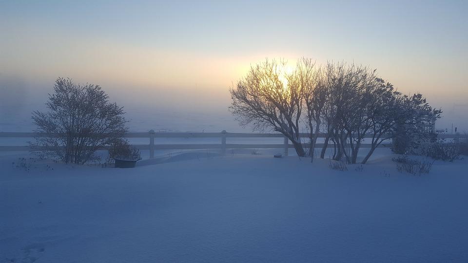 Winter, Fog Sun, Snow, Morning, Mist, Sky