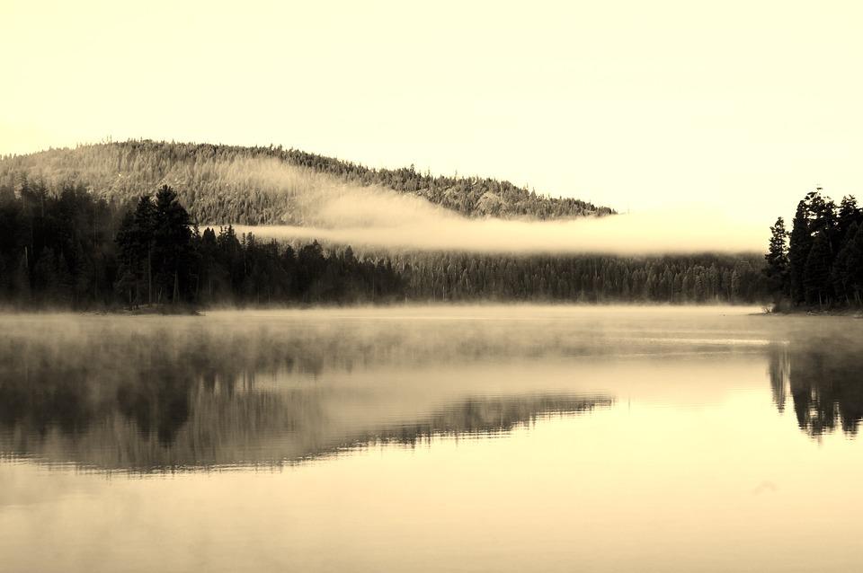 Lake, Fog, Symmetry