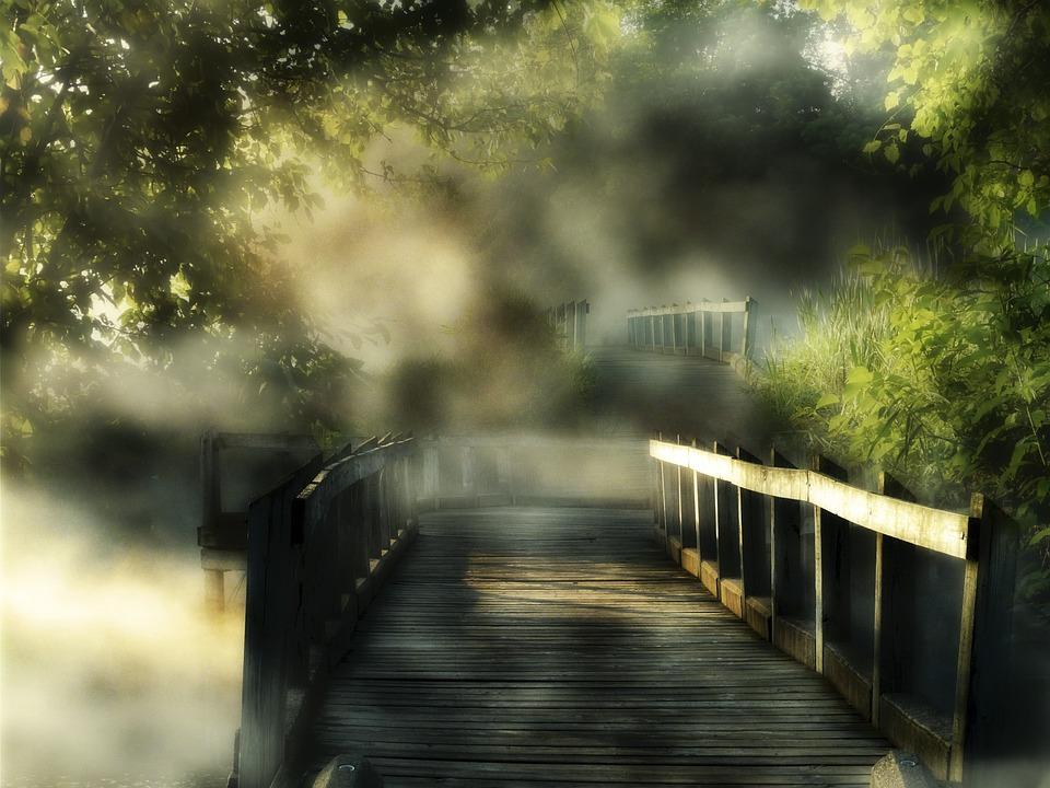 Wooden, Bridge, Sunny, Foggy, Day, Nature, Landscape