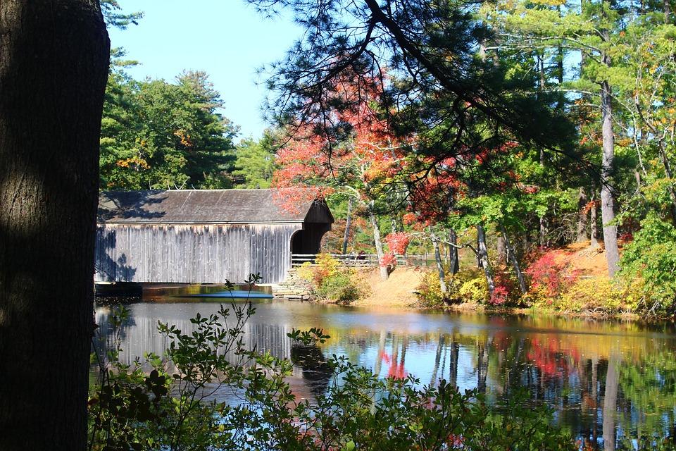 Fall, Autumn, Bridge, Water, Covered Bridge, Foliage