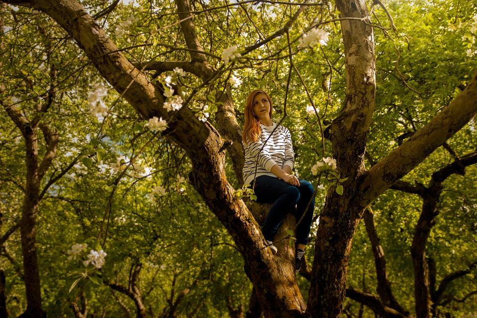 Girl, Garden, Apple Tree, Tree, Summer, Foliage