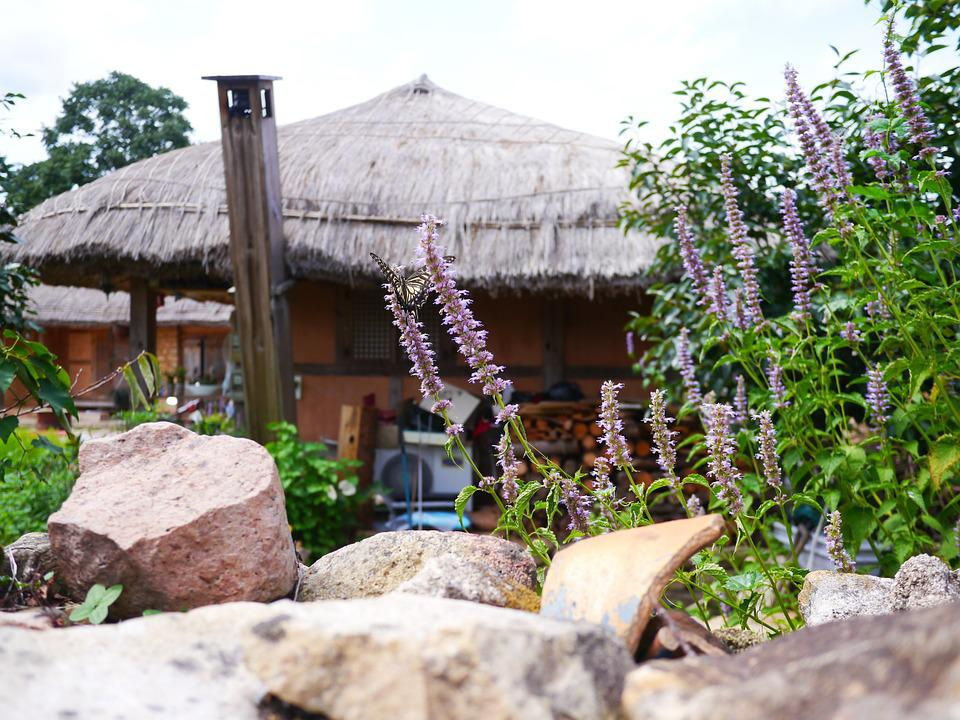 Folk, Butterfly, Flowers, Nature, Thatch Roofed Hose
