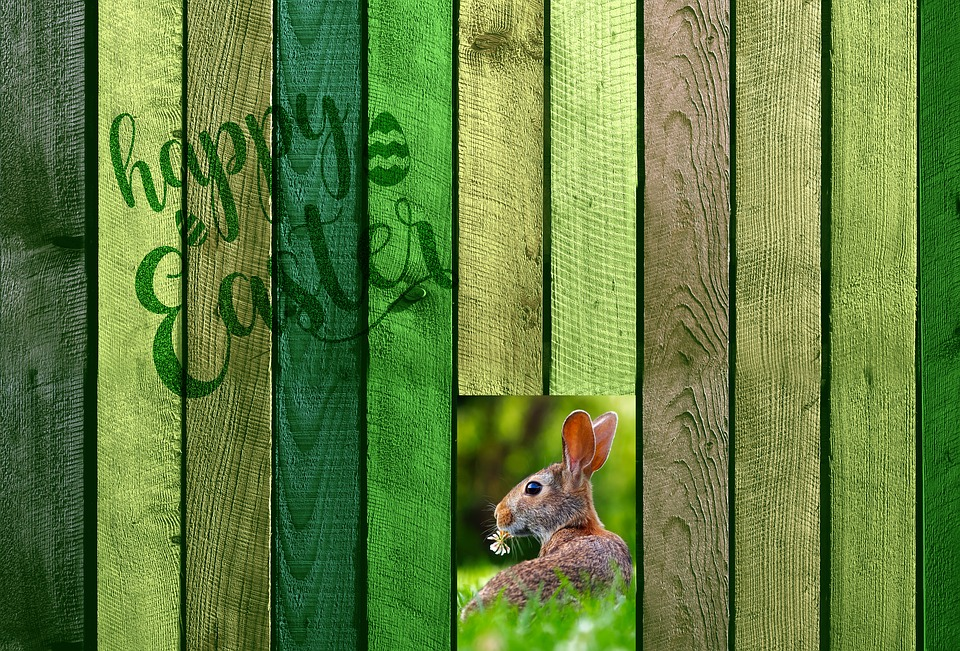 Easter, Boards, Wall, Fence, Hare, Easter Bunny, Font
