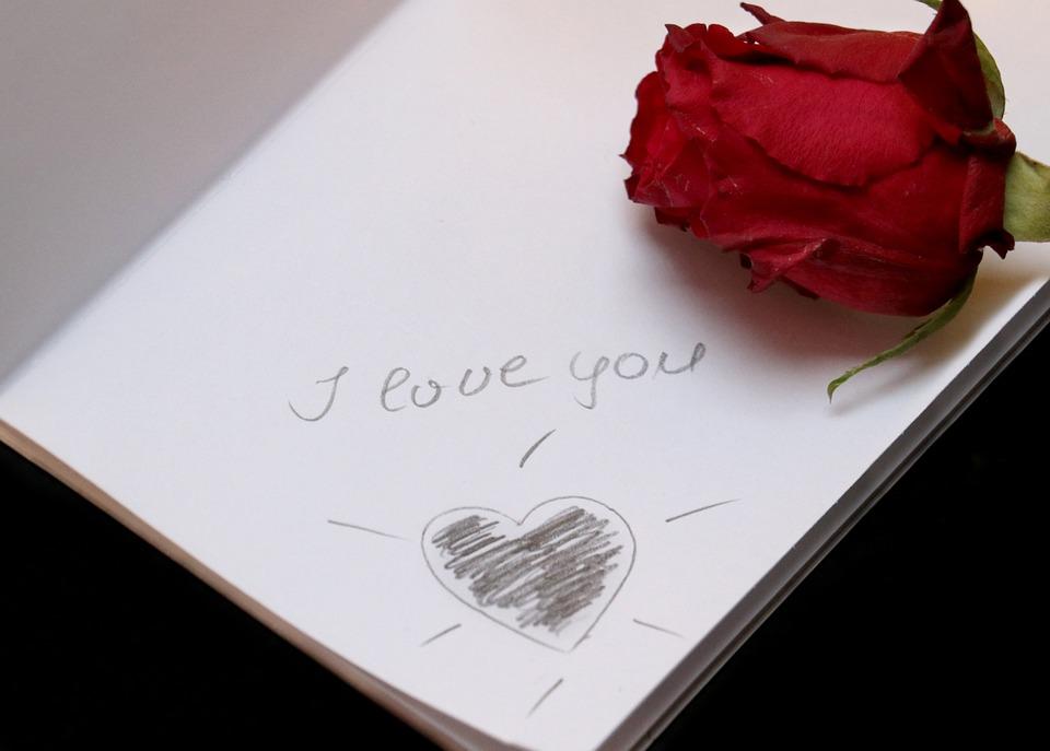 Paper, Love, Font, Lettering, Rose, Red Rose, Romance