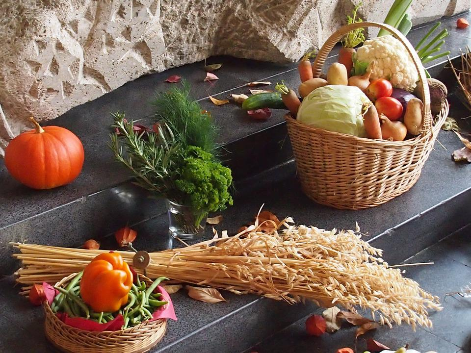 Thanksgiving, Food, Agriculture, Autumn