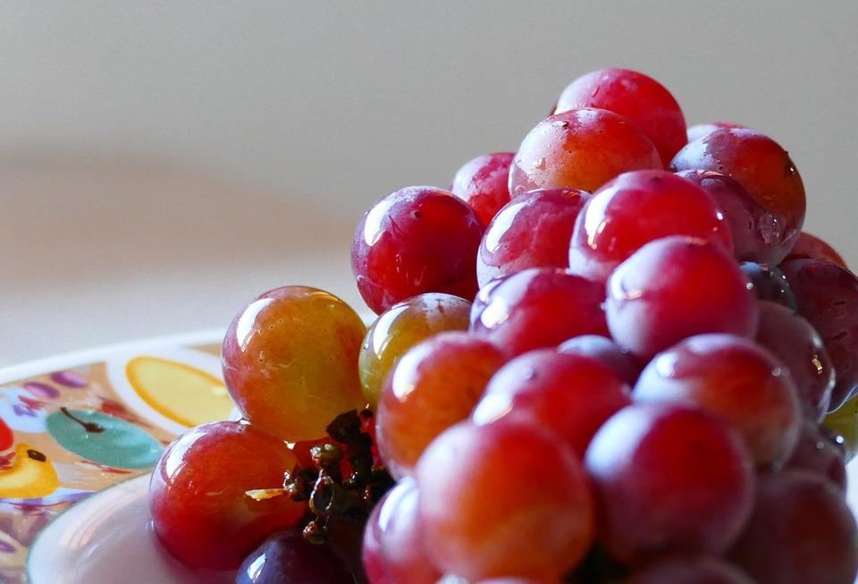 Grapes, Red, Fruit, Food, Bunch, Delicious, Produce