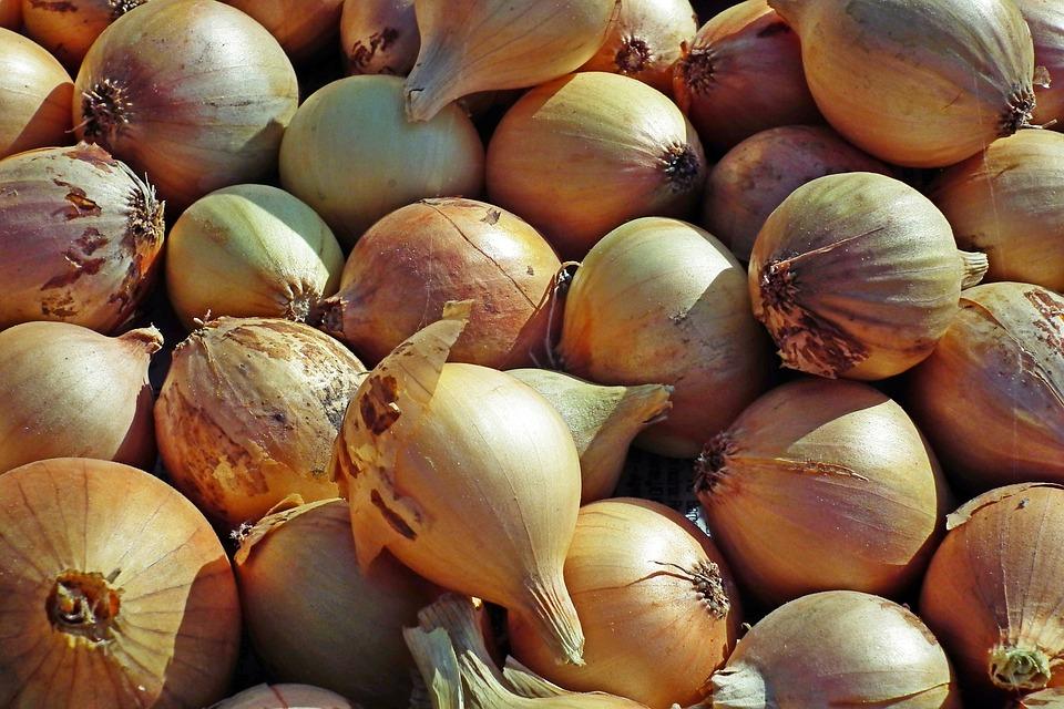 Onion, Vegetables, Food, Garden, Eating, Vitamins