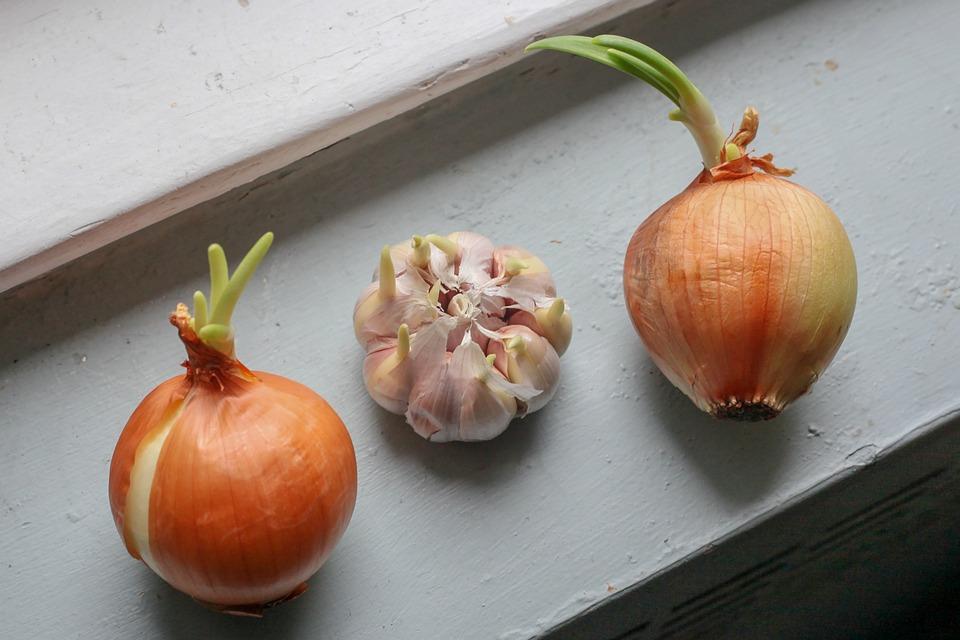 Onion, Garlic, Cook, Food, Eat, Kitchen, Healthy, Fresh