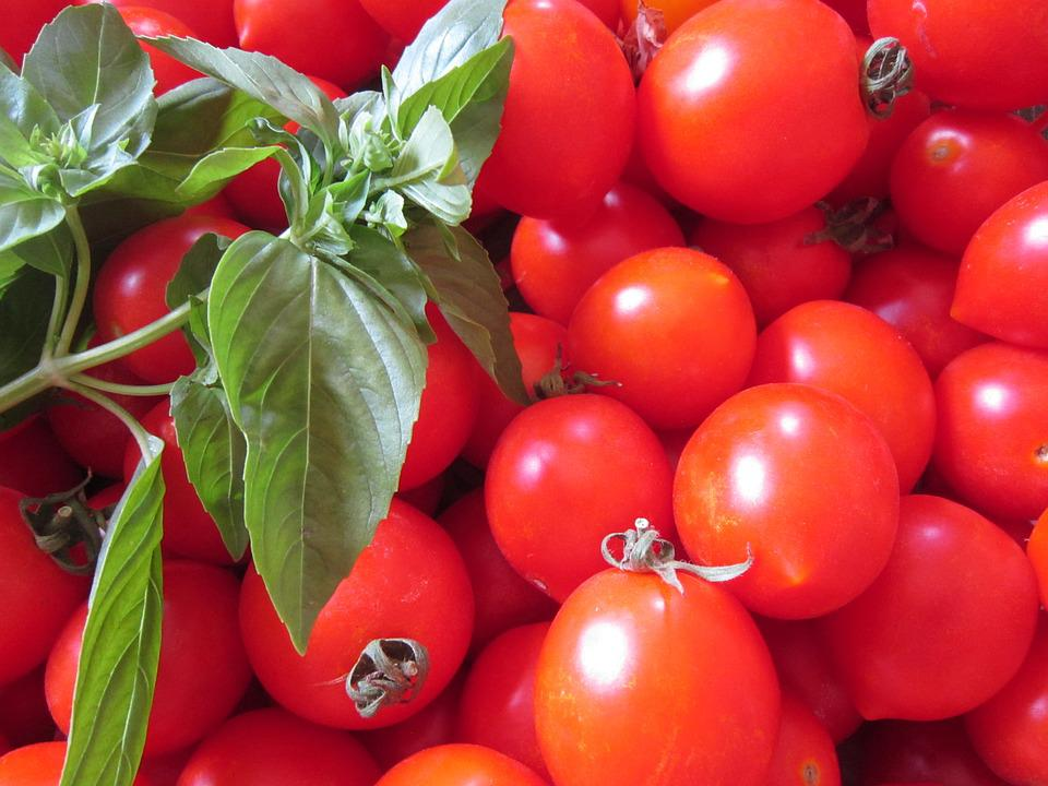 Tomato, Basil, Red, Green, Frisch, Vegetables, Food
