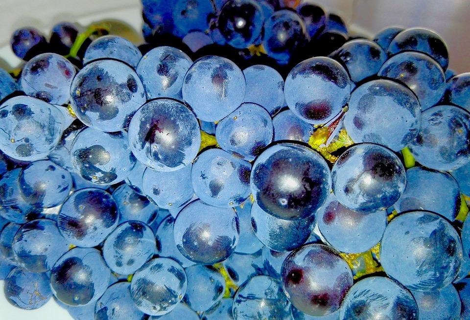 Grapes, Fruit, Food, Dish