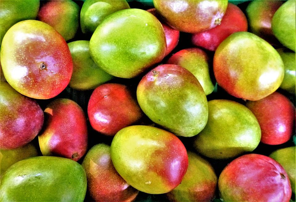 Fruit, Food, Mango, Juicy, In Good Health, Freshness