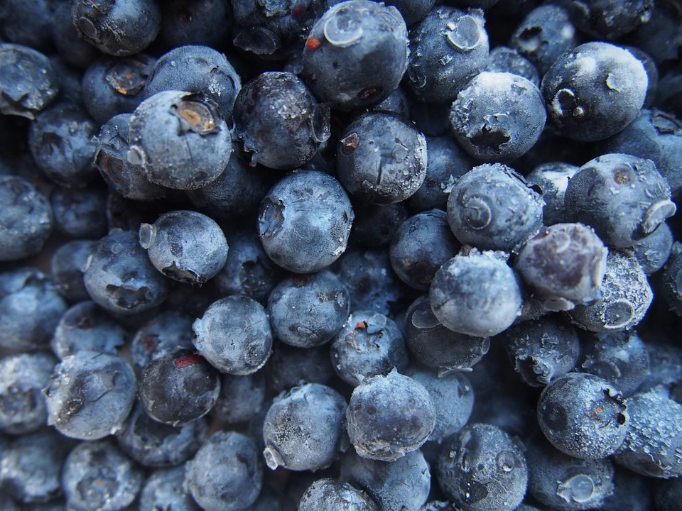 Blueberries, Fruits, Food, Healthy
