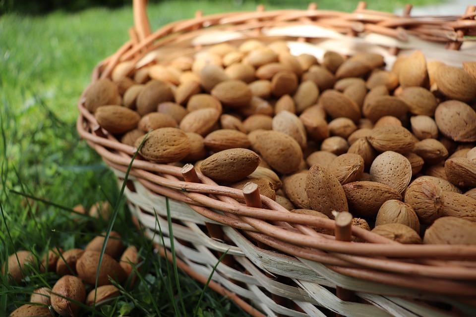 Almonds, Nuts, Food, Snack, Healthy, Vegetarian, Seeds