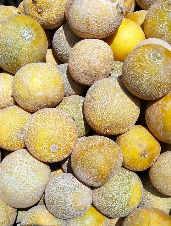 Melons, Yellow, Food, Fruit, In Good Health, Wallpaper