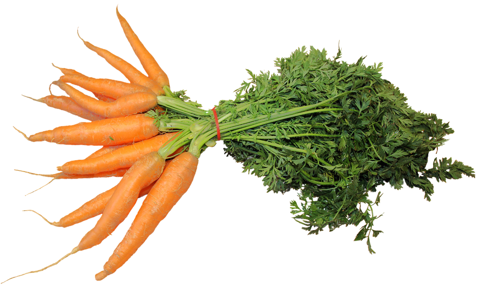 Isolated, Federal Carrots, Vegetables, Carrots, Food