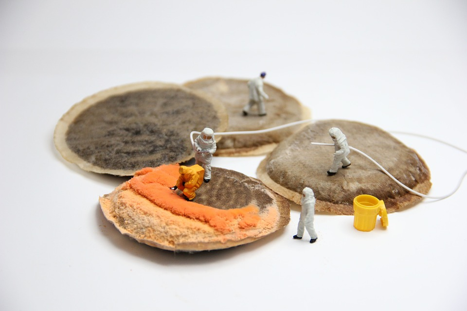 Coffee, Mold, Miniature Figures, Pad, Food, Gift