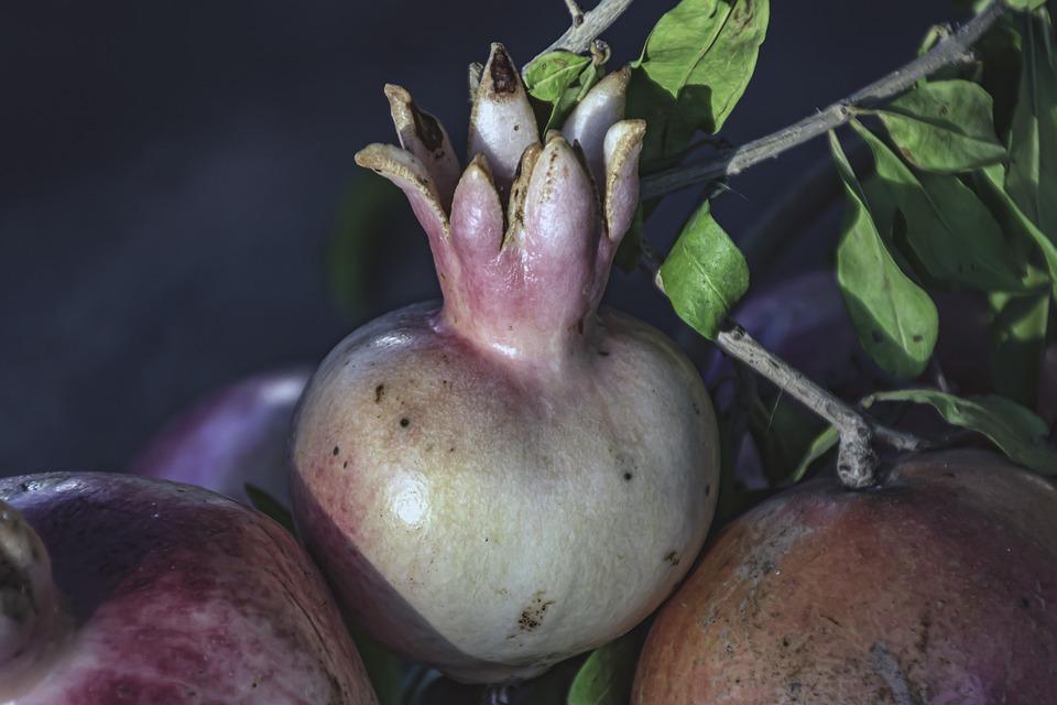 Pomegranates, Health, Fruits, Vitamins, Food, Fresh