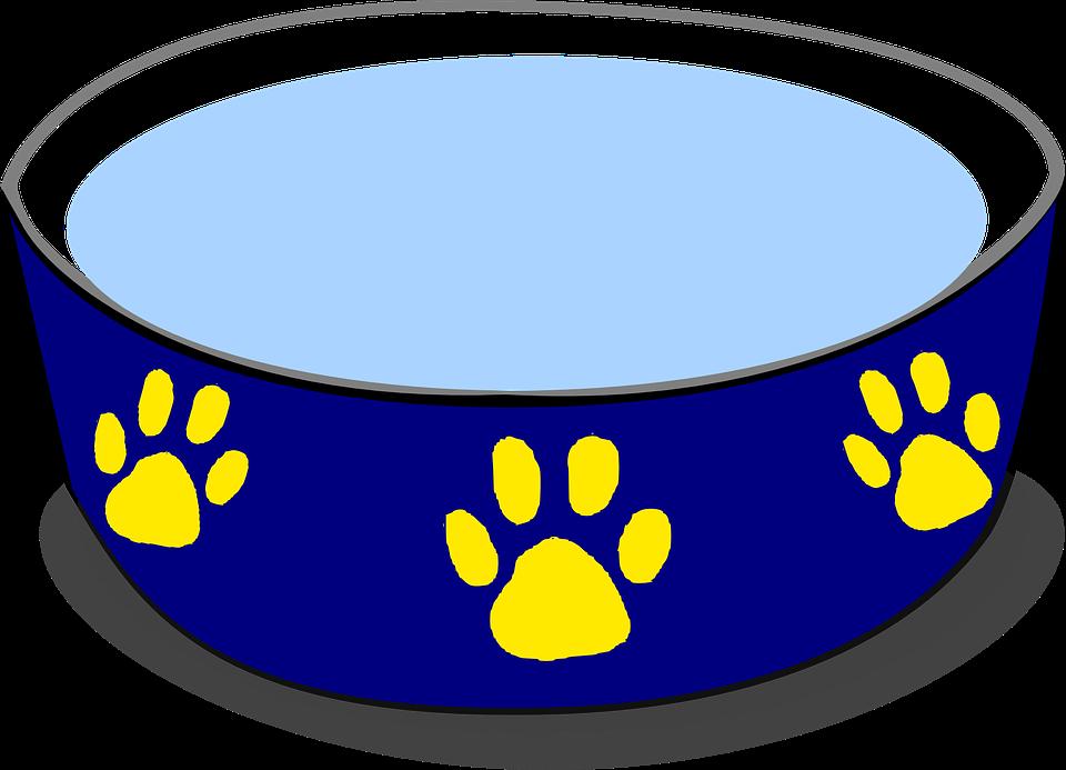 Bowl, Water, Food, Drink, Prints