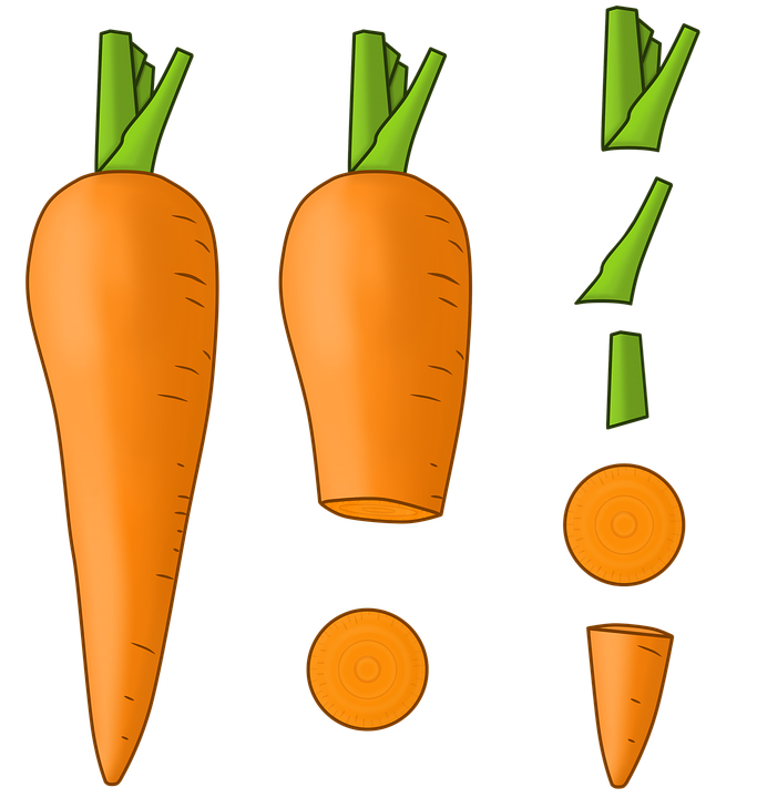 Carrot, Vegetables, Healthy, Food, In Pieces, Stem