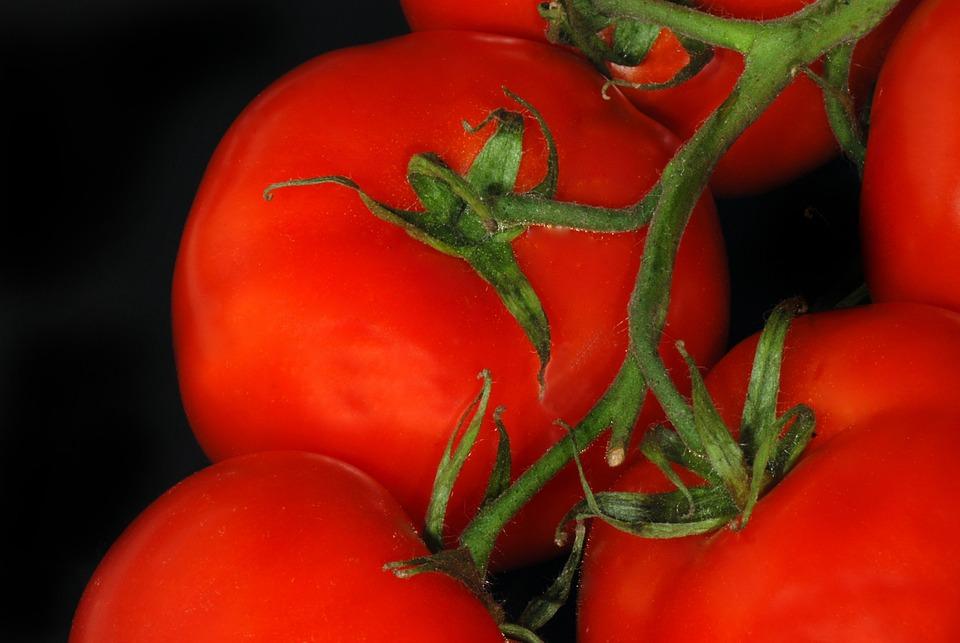 Tomatoes, Vine, Food, Tomato, Healthy, Fresh