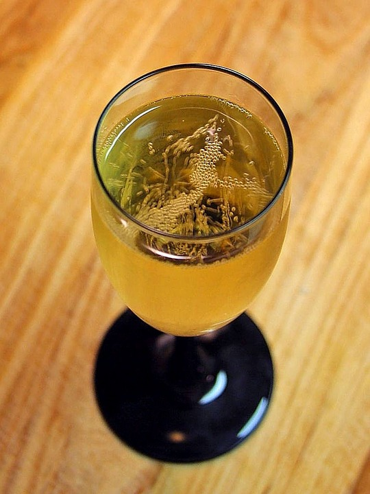 Vine, Champagne, Wine, Drink, Food, Orange Wine