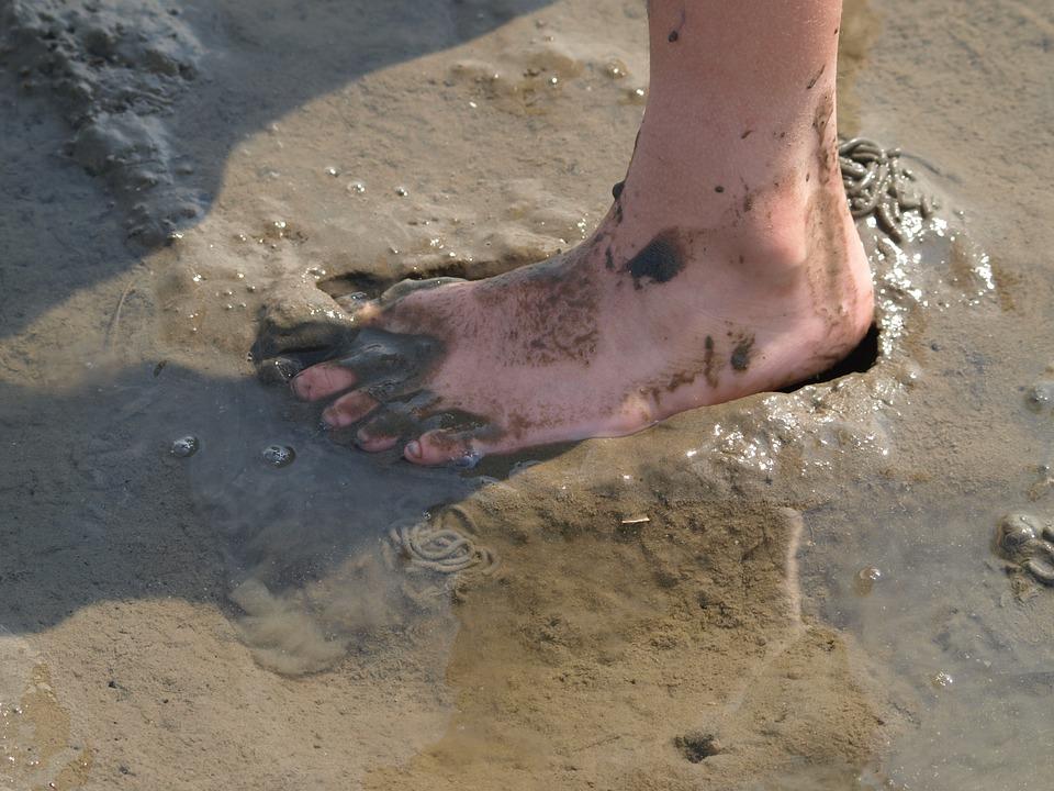 Watts, Foot, North Sea, Wadden Sea, Mud