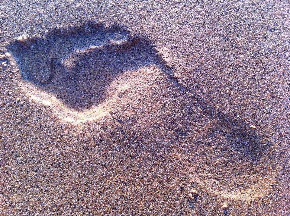 Footprint, Sand, Beach, Foot, Summer, Walk, Travel