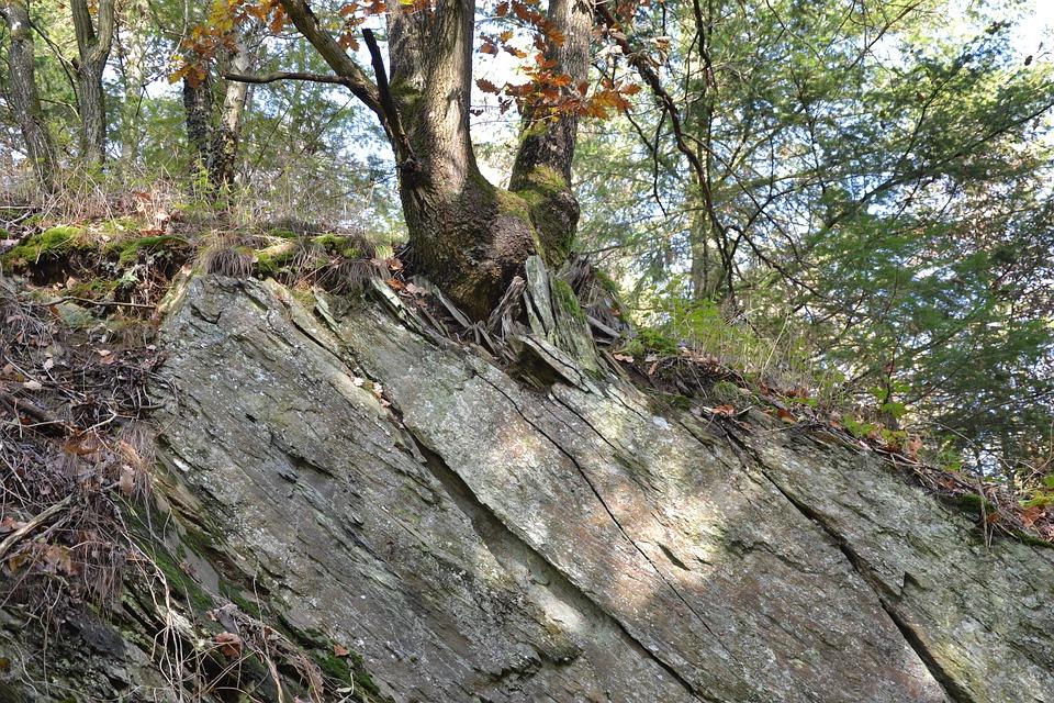 Rheinisches-shale, Eifel, Forces Of Nature, Ocean Floor