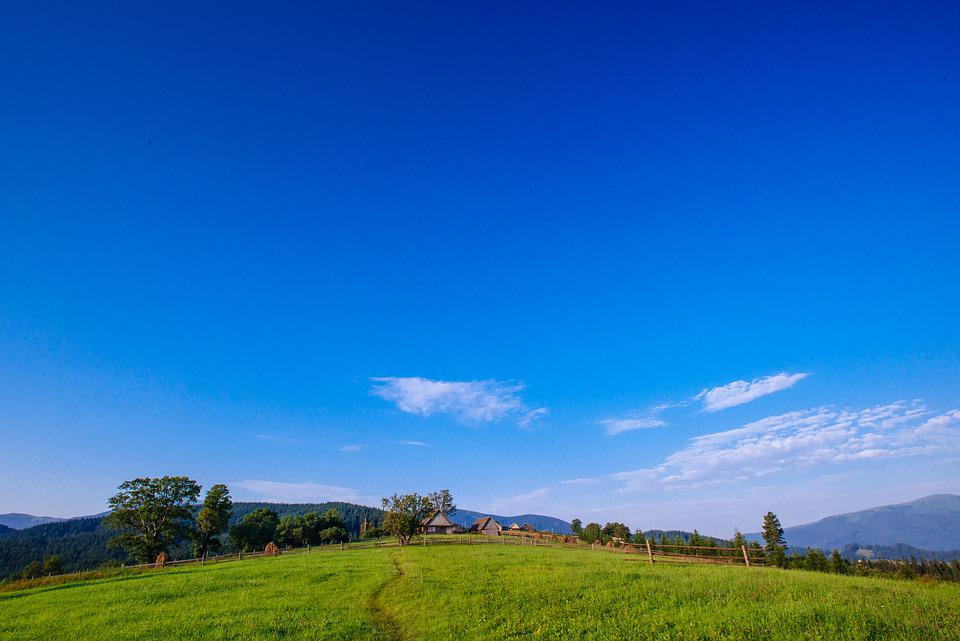Meadow, Grass, Forest, Alp, Autumn, Clouds, Country