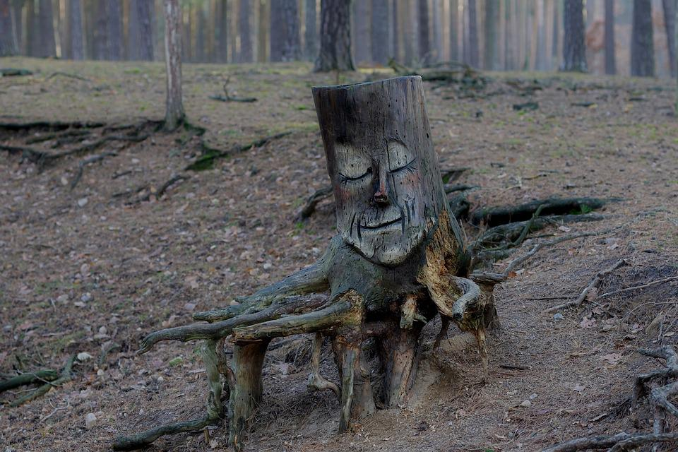 Wood Carving, Nature, Forest, Root, Art