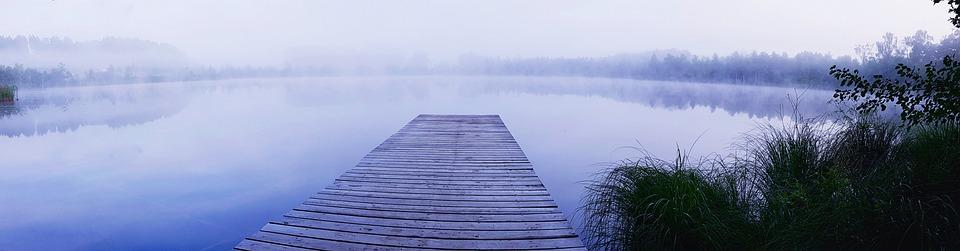 Pond, Web, Boardwalk, Fog, Forest, Mirroring