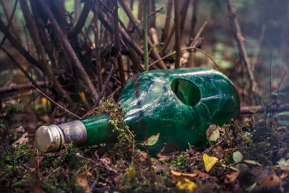 Bottle, Broken, Forest, Pollution, Contamination