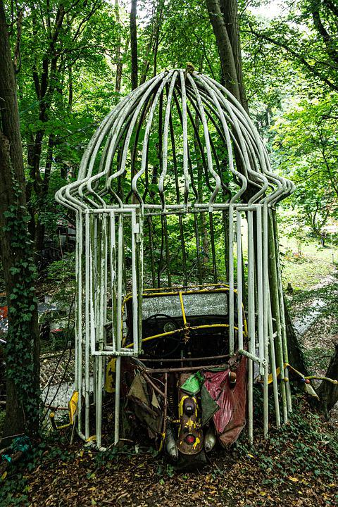 Forest, Cage, Woods, Nature
